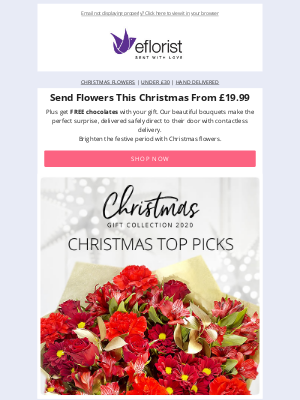 eFlorist (UK) - Save Up To £15 On Christmas Bouquets