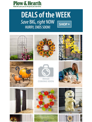 Plow & Hearth - ➡️ Check out this week's deals