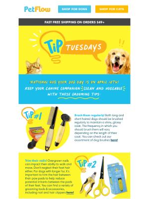 PetFlow - Tip Tuesday: DIY Grooming Tips & Tricks
