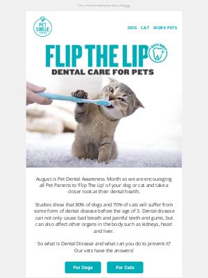 Pet Circle (AU) - Flip The Lip on your Pet! 🐶🐱 Dental Awareness Month 🦷
