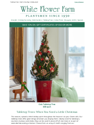 White Flower Farm - Tabletop Trees: When You Need a Little Christmas