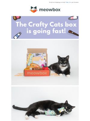 meowbox - Last Chance to Get the Crafty Cats Box!