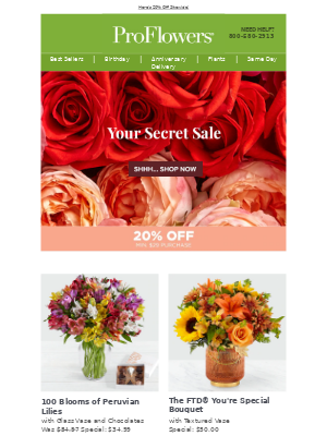 MAILCHARTS, did you miss the Secret Sale? It's BACK!