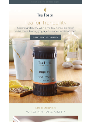 Tea Forté - Soothe your system with Purify.