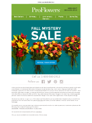 🔎Mystery Sale! How much will you save? 🔍