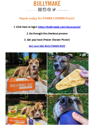 BULLYMAKE - Rejoin TODAY! 🌸 Get The Power Chewer Picnic Box!