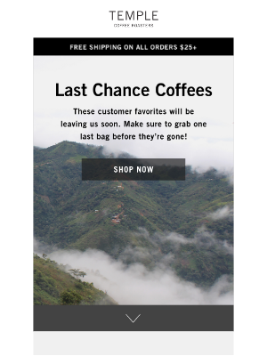 Last Chance Coffees