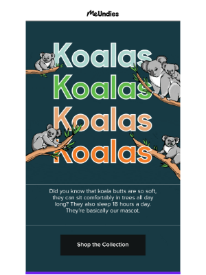 MeUndies - This Is One Koala-ty Print 🐨