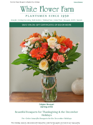 White Flower Farm - Beautiful Bouquets for Thanksgiving & the December Holidays