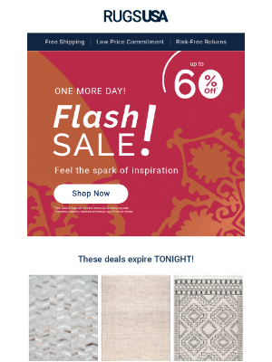 Rugs USA - Flash Sale E-X-T-E-N-D-E-D>>> You Can Still Shop Rugs Starting at $26!