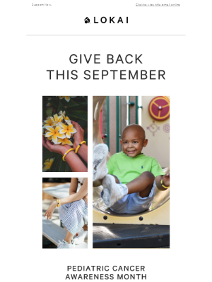Lokai - Causes to Support in September