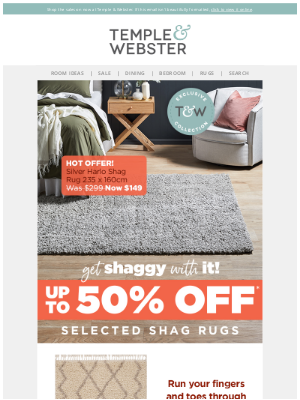 Temple & Webster (AU) - Shag rugs up to 50% off! Plus, over 1,000 gift ideas for kids!