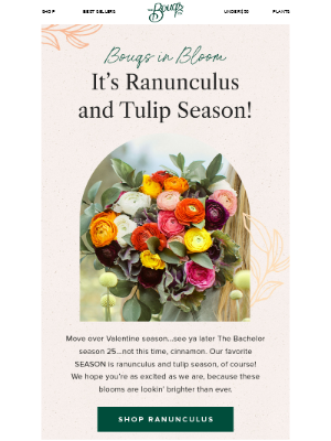 'Tis the Ranunculus and Tulips Season 🌷🌷