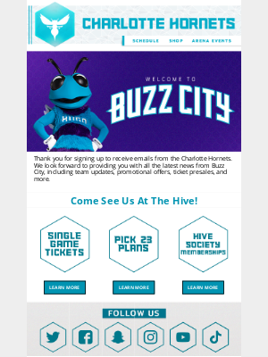 Charlotte Hornets - Welcome To Buzz City 🐝