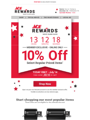Ace Hardware - 🌟 Today Only! 10% OFF Online for You!