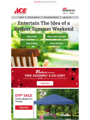 Ace Hardware - Summer Essentials for National Picnic Month