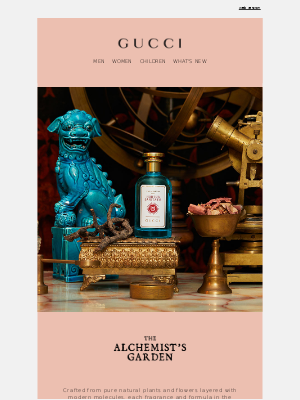 A Story of Magic: The Alchemist's Garden Collection