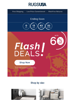 Rugs USA - Here Today. GONE TODAY! Flash Sale Deals Expire at Midnight...