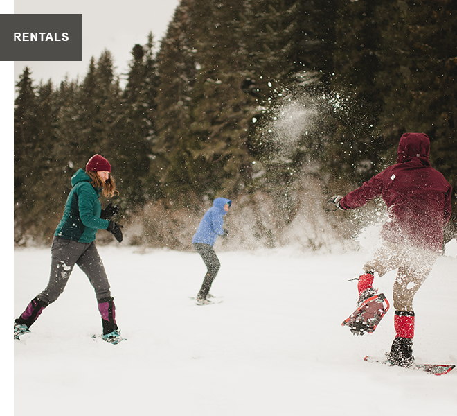 RENTALS. Image of three people playing in the snow.