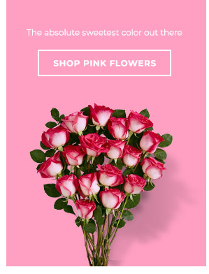 Shop By Pink Flowers