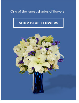 Shop By Blue Flowers