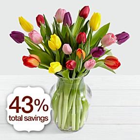 20 Multi-Colored Tulips
