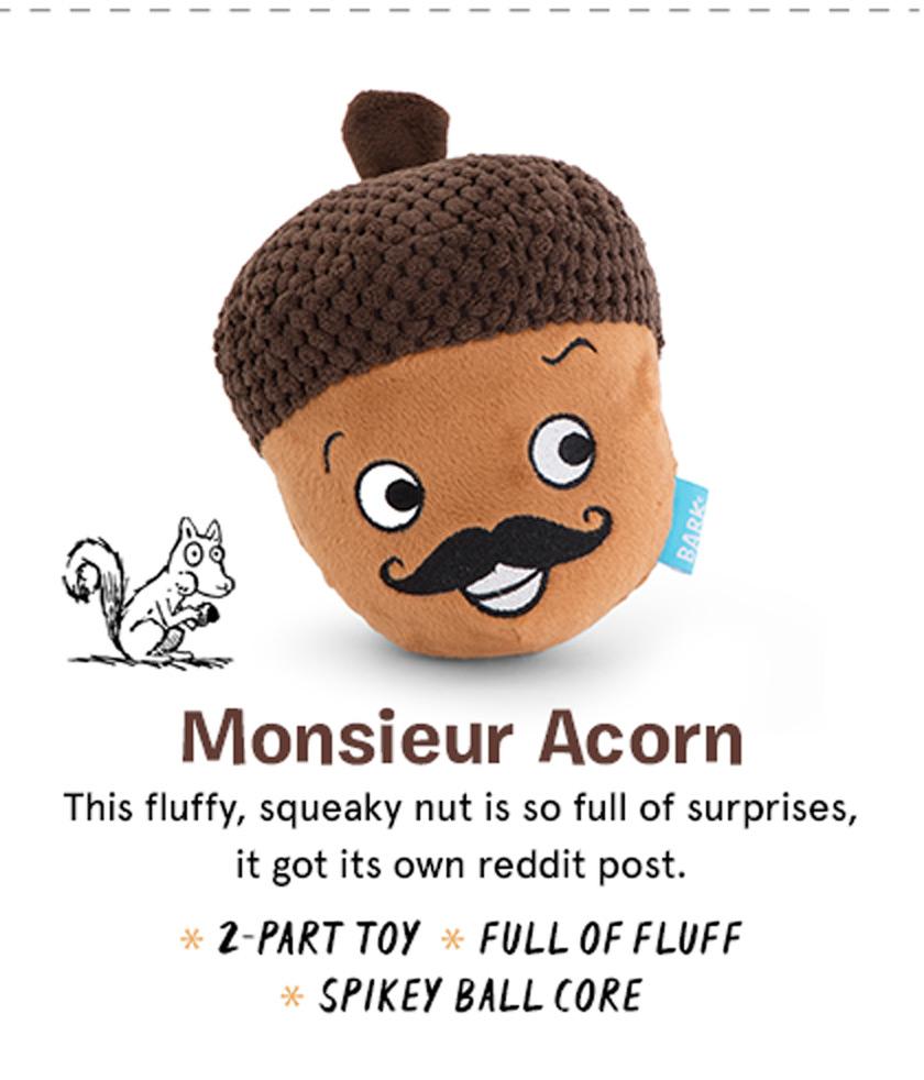 Monsieur Acorn