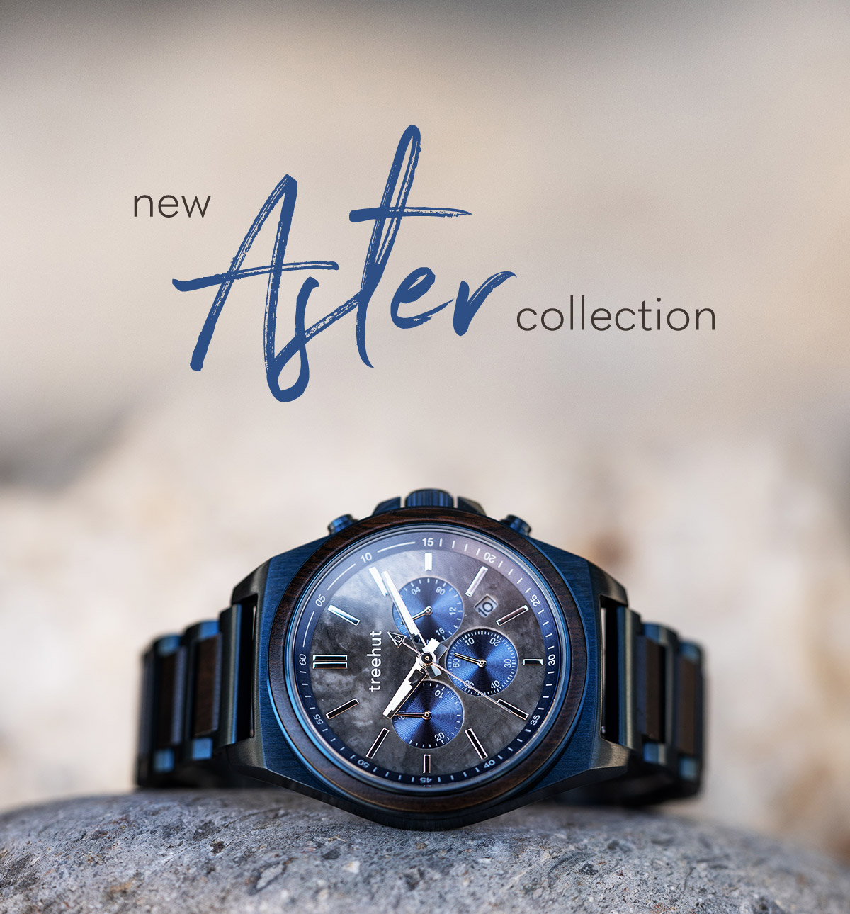 New Aster Collection.